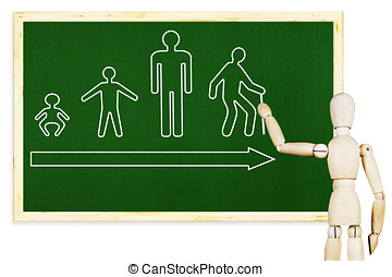 Man draws stages of human life on the green chalkboard. Abstract image with a wooden puppet