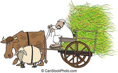 Man Driving A Hay Cart