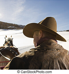 Man driving horse. - Back view of a mid-adult Caucasian man...