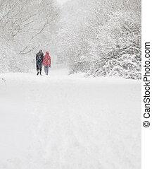 man en vrouw, gang binnen, sneeuw