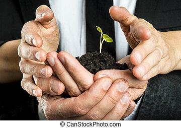 man en vrouw, zaken partners, nurturing, een, nieuw, plant, verenigd, om te beschermen, een, groene, breekbaar, spruit