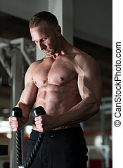 Man Exercising Biceps In The Gym