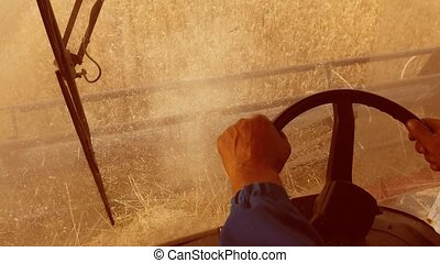 Man farmer driving lifestyle combine harvesting on the field...