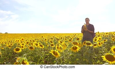 Man farmer hand hold bottle of sunflower oil the field...