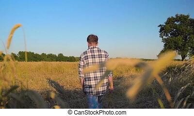 Man farmer on Barley field - Sad Man farmer walking through ...