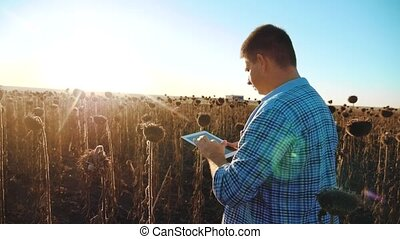 man farmer with tablet in the sunflower lifestyle works...