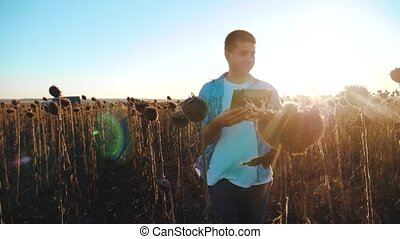 man farmer with tablet in the sunflower works field goes...
