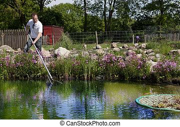 man fishes in garden pond, mann keschert im gartenteich -...