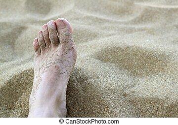 man foot in summer beach sand