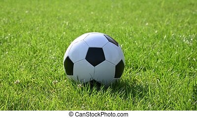 Close up man foot kicks black and white soccer football ball on green grass of turf field pitch, low angle view, 4K