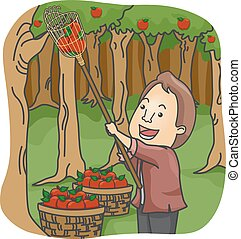 Man Fruit Picker - Illustration of a Man Picking Apples in...