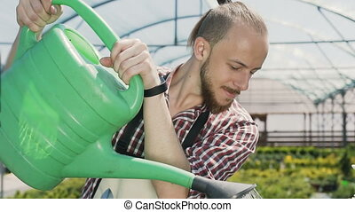 Man gardener in green apron watering plants and flowers with garden sprayer in greenhouse. Drops of water on the background of the sun. 120fps