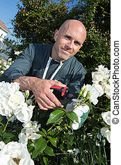 man gardening outside in summer nature