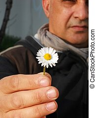 Man giving a daisy