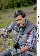 man hammering wooden stake into ground