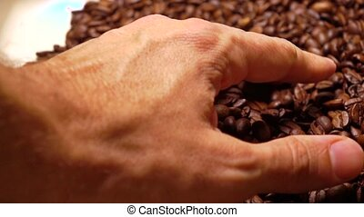 Man hand scooping roasted coffee beans, super slow motion...