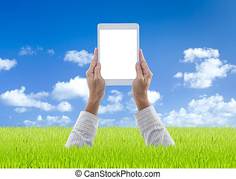 Man hands holding white digital tablet on green grass with blue sky background