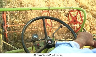 Man harvesting crop driving combine. Close up, hands and...