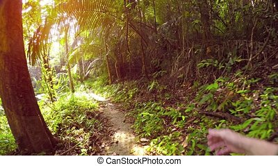 """""""The sun peeks through the leaves of tropical trees as a man hikes along a jungle nature trail, swinging his hands in an awkward, alternating pattern. Full HD video"""""""