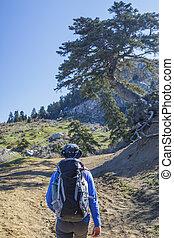 Man hiking at the mountain