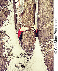 Man hold tree trunk with the frozen bark covered with sticky snow