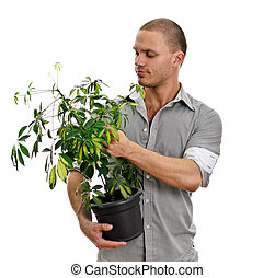 Man holding a pot with plant. Isolated on white background
