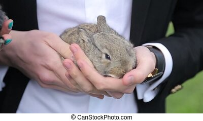 man holding a rabbit in the hands