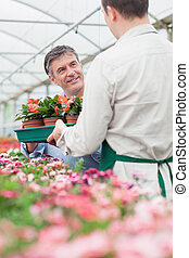 Man holding boxes of plant looking at employee