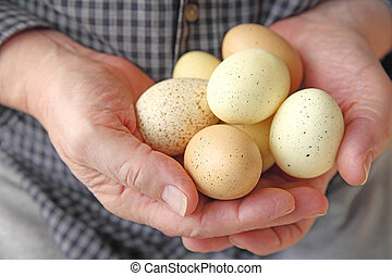 Man holding speckled eggs