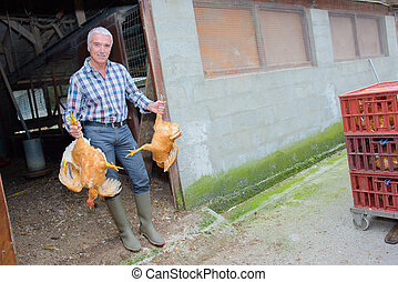 Man holding two chickens by their legs
