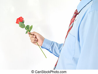 Man holding with red rose on white background