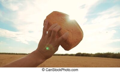 man holds a golden bread in a wheat field against the blue sky. slow motion video. successful agriculturist in field of wheat . lifestyle harvest time. bread baking vintage agriculture concept