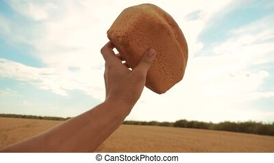 man holds a golden bread in a wheat field against the blue sky. slow motion video. successful agriculturist in field of wheat lifestyle . harvest time. bread baking vintage agriculture concept
