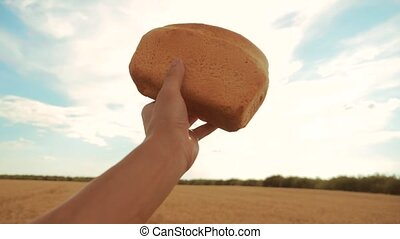 man holds a golden bread in a wheat field against the blue sky. slow motion video. successful agriculturist in field of wheat . harvest time lifestyle. bread baking vintage agriculture concept