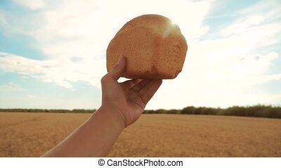 man holds a golden bread in a wheat field against the blue sky. slow motion video. successful agriculturist in field of wheat . harvest time. bread baking vintage agriculture concept lifestyle