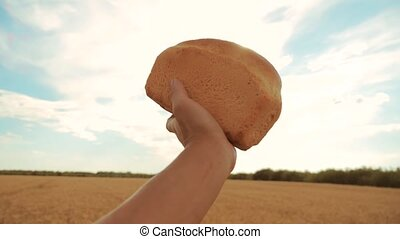 man holds a golden bread in a wheat field against the blue sky. slow motion video. successful agriculturist in field of wheat . harvest time. lifestyle bread baking vintage agriculture concept