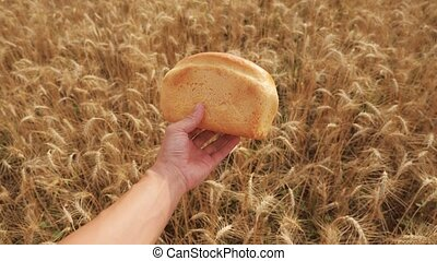man holds a golden bread in a wheat field lifestyle. slow motion video. successful agriculturist in field of wheat . harvest time. bread baking vintage agriculture concept