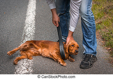 Man holds a leather belt in hand and he wants to hit the dog - dog abuse