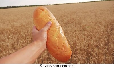 man holds a loaf in a wheat field.slow motion video....