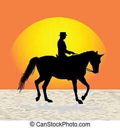 Man horse trainer