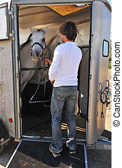 man, horses and trailer
