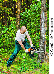 man in a forest sawing wood with a chainsaw
