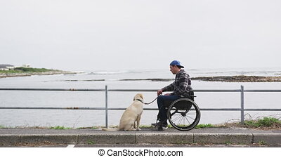 Man in a wheelchair looking at the sea with his dog