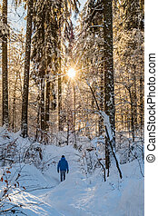 Man in blue jacket walking true snow covert forest on lake...