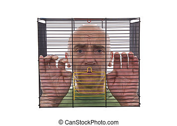 man in cage - adult of man closed in cage on white...