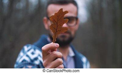 Man in glasses is walking through the autumn forest and looks at the oak leaf close up