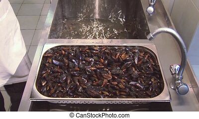 Man in glove put washed cleaned mussels into sink with clean...