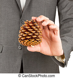 Man in grey suit is holding a pine cone