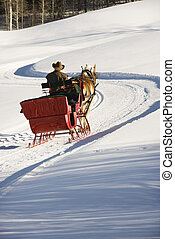 Man in horse drawn sleigh. - Rear view of man in horse drawn...