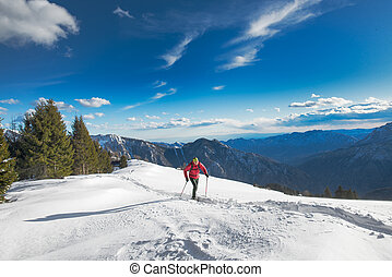 Man in mountain scenery